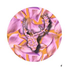Deer on Floral Summer