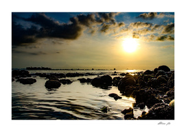 Coral Sunrise