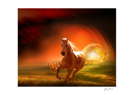 Gallop Through The Sun