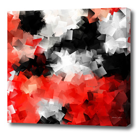 Black and white meets red version 19
