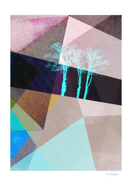 P16-E TREES AND TRIANGLES