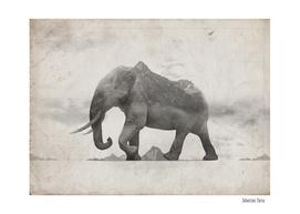 Rocky Elephant