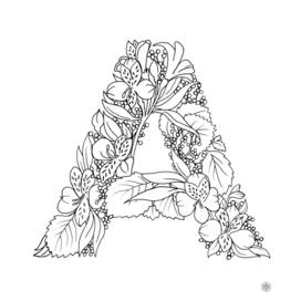 Alstroemeria & Arrowwood