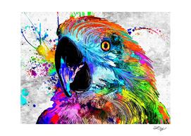 Ara Parrot Grunge