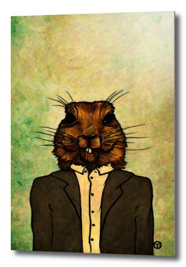 Mr Groundhog