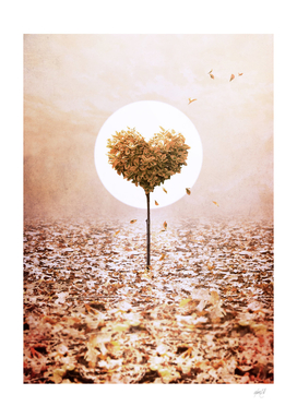 A Heart Symphony - Autumn