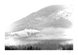 Fog Crawl up Gillette Mt BW