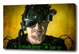 Breaking Borg