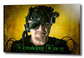 Breaking Borg