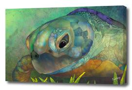 Turquoise Amber Sea Turtle_Craftiespot