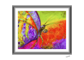 Extremely PURPLE_Melancholic Magenta Butterfly_CRAFTIESPOT