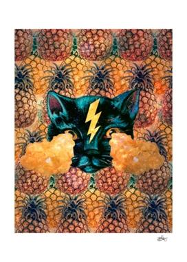 Ananas Cat