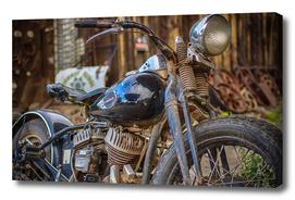 Harley Rat
