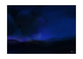 night on the fields