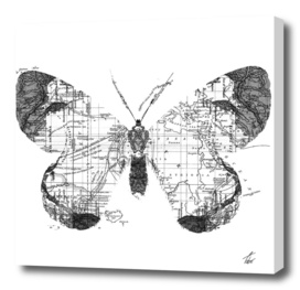 Butterfly Wanderlust Black and White