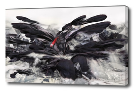 THE RISE OF THE BLACK SWAN