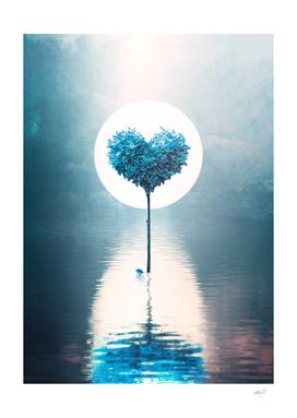 A Heart Symphony - Ocean
