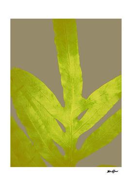 Bright Yellow Fern Greenery Leaf