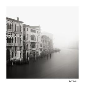Venice Study V
