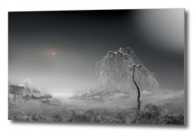 Frosted Sun