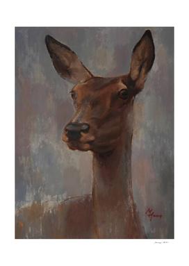 Portrait of a Young Doe