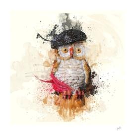 The owl Spain
