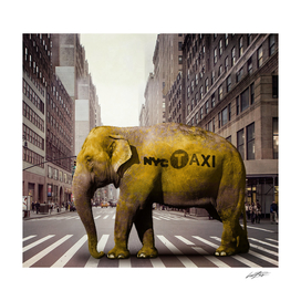 Elephant Taxi NYC