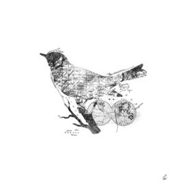 Bird Wanderlust Black and White