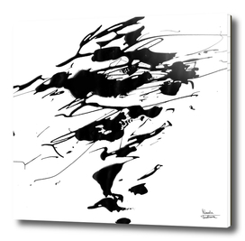 Whirlwind-10