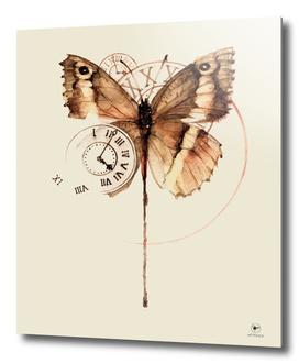 butterflyclock