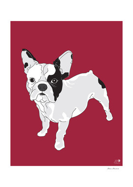 French Bulldog - Dogs series