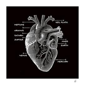 Solar Vascular System