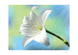 zen art and amaryllis