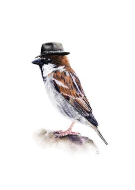 Mr. I. Sparrow