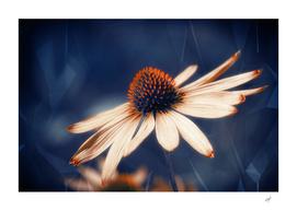 Flowers Indigo