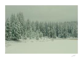 Frater Lake Wonderland