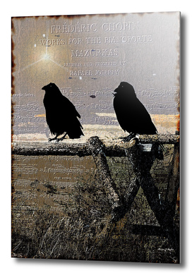 Singing Crows