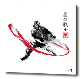 Star Warrior Sumi-e