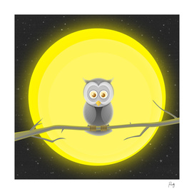 Owl Sleepover