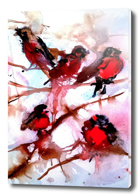 Robins in the Snow