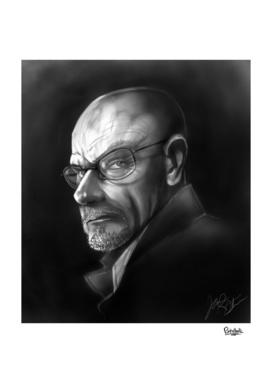 Walter White Portrait
