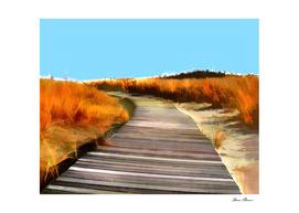 Abstract Beach Dune Boardwalk