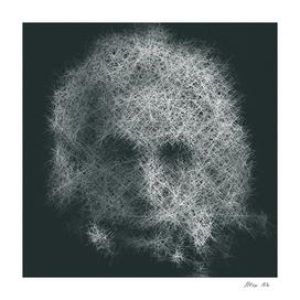 Pro 55. Albert Einstein 21st Century