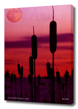 Moon With Cattails