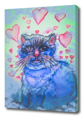 sad cat in love