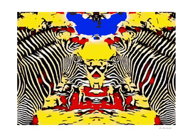 zebras with red yellow and blue background