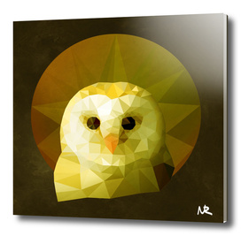 Polygon Owl
