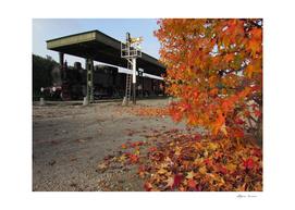 railway station in autumn