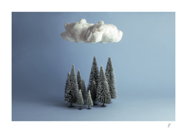 A cloud over the forest.