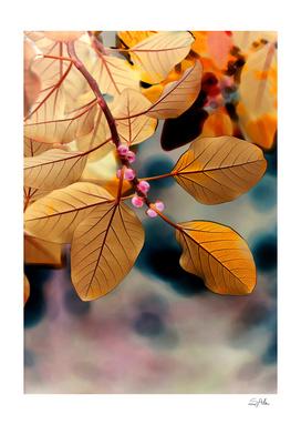 Plant matter_1